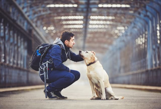 犬を飼っている人と飼っていない人では、死亡リスクに違いがあるのか。写真はイメージ=(C)JaromA-r Chalabala-123RF