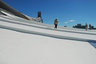 塗装中の第一体育館の大屋根。まるで雪原のような光景だ。曲面を描く屋根はトランポリンのような歩き心地 (写真:日経アーキテクチュア)
