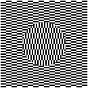 図4 画像を斜めに動かすと円形と外側が別々に動く(オオウチ錯視)