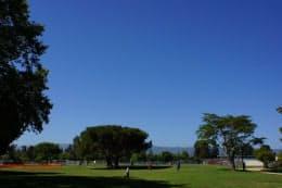 校舎に隣接する公園には今日も青空が広がる(筆者撮影)