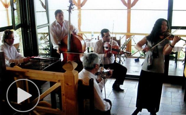 ハンガリーのロマ民族、「酒場の音楽」調べ豊かに