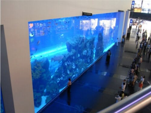 日プラのアクリル板はUAEのドバイ水族館でも使われている