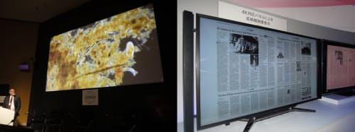図4 左は、米University of Southern California(USC)の研究チームが電子顕微鏡を用いて撮影した海洋微生物の4K映像。高精細化によって、「海洋生物学者でも見たことがない映像を撮影・表示できるようになった」という。同チームは、自然を扱うドキュメンタリー番組などで有効とみている。研究用の専用通信ネットワークを用いてUSCで撮影した4K映像をリアルタイムに東京に伝送した。2011年10月に開催された東京国際映画祭でのデモ。右は、ソニーが2012年10月の家電展示会「CEATEC」で見せた、4Kテレビに新聞の紙面を表示するデモ。4K解像度では、小さな文字もつぶれない状態で表示できる