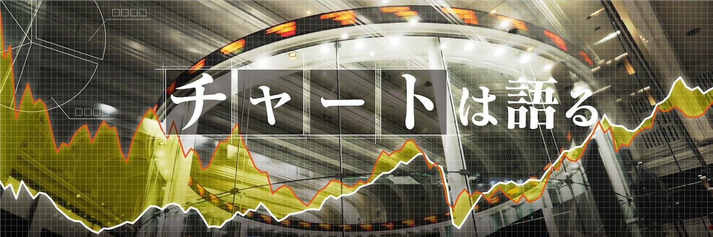 バブル30年、成熟した株 割高さ解消、株主に成長の果実