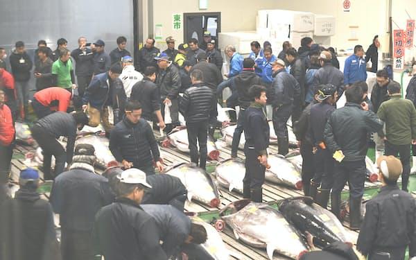 5日朝、青森県大間産のクロマグロに史上2番目の高値がついた(東京・豊洲市場)