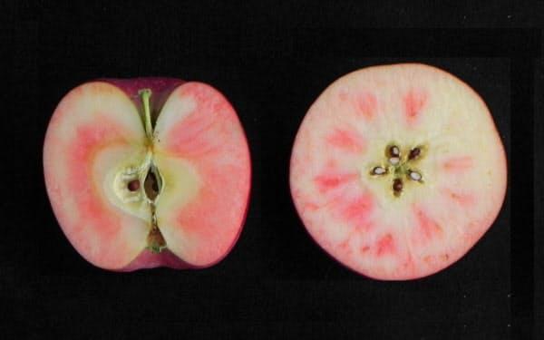 果肉の一部がピンク色に染まるのが特徴だ