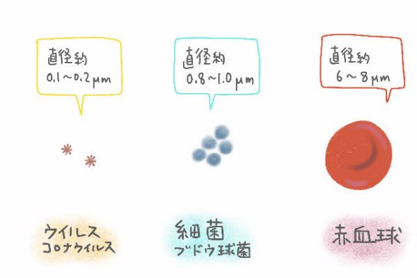 長崎 コロナ 大学 納豆