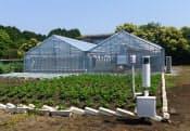 富士通は、農業クラウドを検証・実践する場として同社沼津工場敷地内に「Akisai農場」を設置している