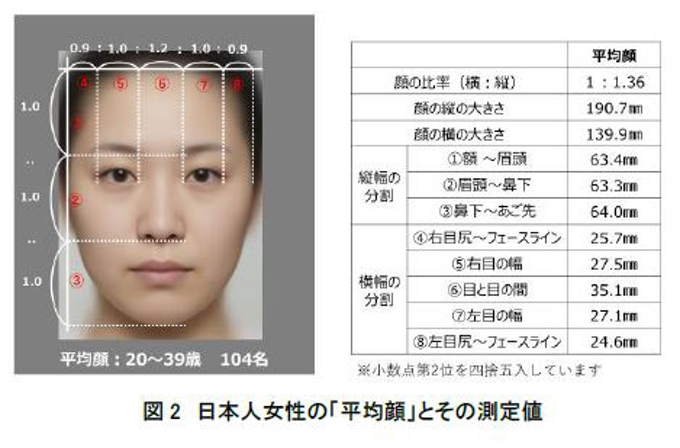 平均 さ 顔 大き の