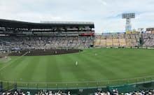 酵母由来の肥料を散布し、芝の根付きがよくなった甲子園球場(兵庫県西宮市)