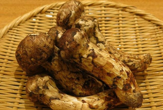 味と香りの良さで近年注目のブータン産のマツタケ