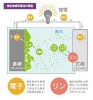 微生物燃料電池の仕組み