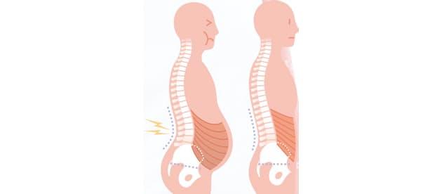 「お腹の脂肪 腰痛」の画像検索結果