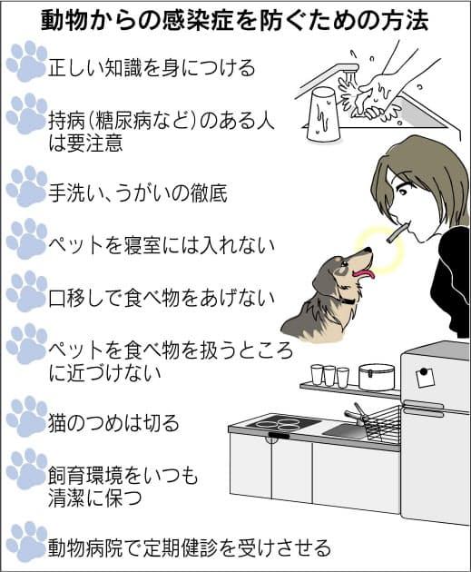 犬 から うつる 病気 犬から人にうつる病気 (全文) [犬] All