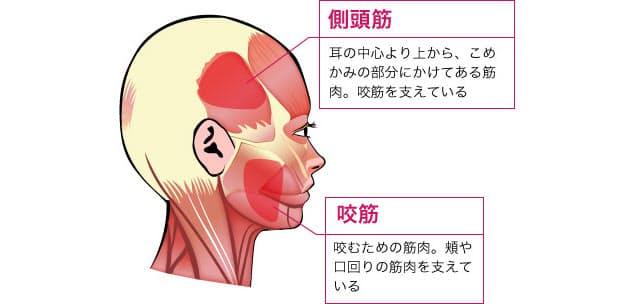 筋肉 顔 ほぐす の