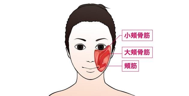 せー で頬を持ち上げ 直接ほうれい線をケア woman smart nikkei style