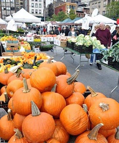 ニューヨークのマーケットに並ぶカボチャ。果皮がオレンジ色でパンプキンと呼ばれている