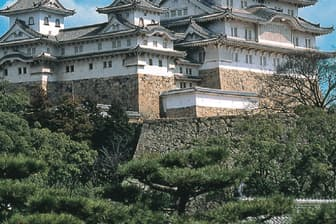 現在は大修理中(写真1)。城の全域が江戸時代に近い姿で残る。写真2は菱の門