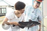 鉄道に乗り鹿島神宮へ 夏バテ予防にナマズを食す