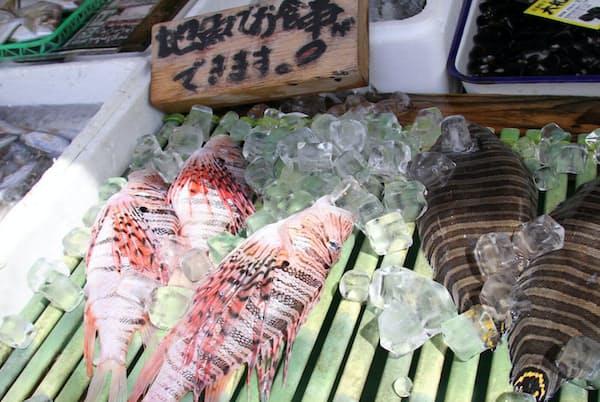 「地魚でお食事できます!」の木札の前に並ぶミノカサゴ(左)と舌ビラメ(神奈川県三浦市の「まるいち魚店」)