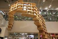一頭の龍をイメージしたという巨大な本棚は建築設計事務所「アトリエ・ワン」によるもの