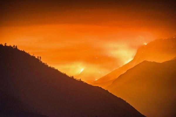 サンフランシスコ 山 火事
