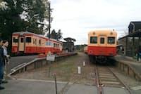 上総中野駅でそろって出発を待つ、いすみ鉄道(左)と小湊鉄道の列車