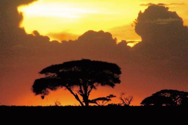雄大なマサイマラの大地に映える夕焼け空