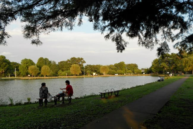 緑地公園に隣接する立地にホテルを建設する