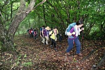 ロングトレイル入門講座で軽井沢の離山を登る参加者