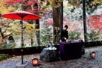 野点の抹茶や茶菓子がふるまわれる星のや京都の「紅葉お茶会」。夕暮れ時の紅葉を惜しむようにめでる