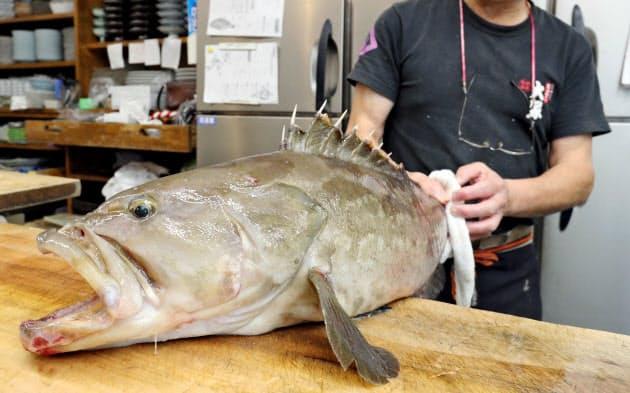 福岡の冬のご褒美 幻の魚「アラ」の料理|トラベル|NIKKEI STYLE