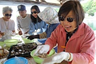 真珠の取り出し体験をするタイの観光客(三重県志摩市のパール美樹)
