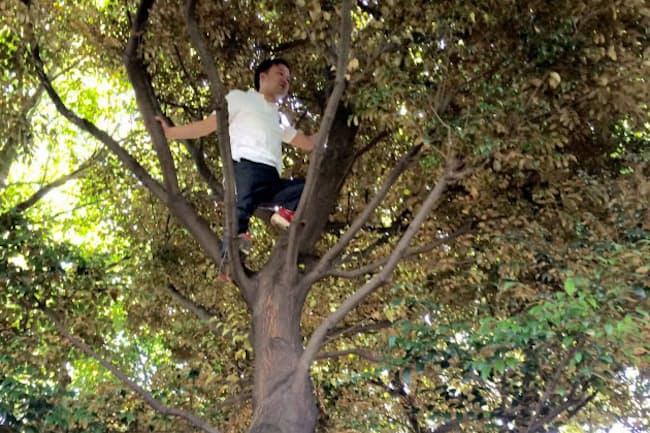 木登りができる「公園」も広がってきた