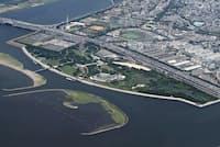 野鳥が多く飛来する葛西海浜公園についてはラムサール条約の登録を目指す(東京都江戸川区)