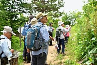沿道の植物を観察しながら歩く参加者(山形県上山市)