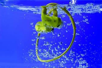 水泳をしながら音楽が聴ける音楽プレーヤー。使用する人も増えているという