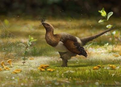 新種恐竜セリコルニス・スンゲイ(Serikornis sungei)がエサを捕らえる様子。アーティストによる想像図。(ILLUSTRATION BY EMILY WILLOUGHBY)