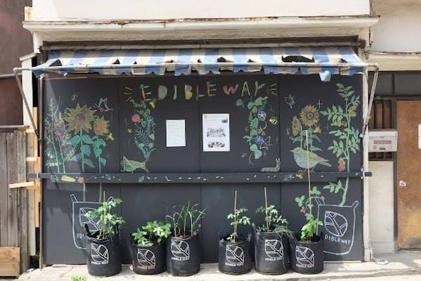 空き家の前にプランターを置き、住民が野菜を育て「食べられる景観」をつくる