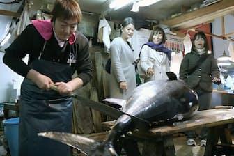 この日は100キロ級の生本マグロ(長崎県対馬産)が入荷した