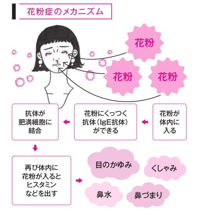 症 症状 花粉