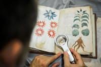 米イェール大学の貴重書室に保管された小さく素朴な本「ボイニッチ手稿」は、世界で最も謎の多い書物の一つだ(PHOTOGRAPH BY CESAR MANSO, AFP, GETTY)