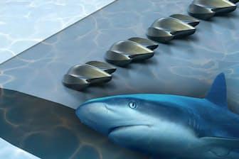サメ肌の構造が、飛行機、風力タービン、ドローン、自動車の性能を向上させる可能性がある。(IMAGE BY JAMES WEAVER, HAVARD UNIVERSITY)