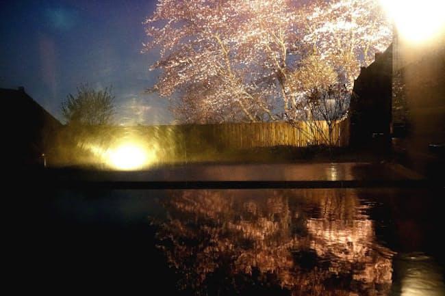 オーベルジュ内子の温泉に入って眺めるぜいたくな夜桜