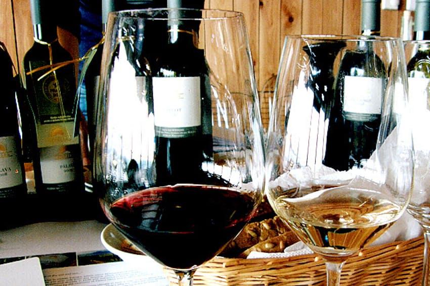 チェコのワイン名産地、南モラビアの有名ワイナリー、ソンベルクのテイスティング風景