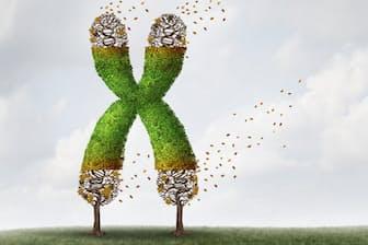 染色体の末端にあるテロメアの長さは老化の尺度の一つのようだが、寿命の判断にも使えるのか。画像はイメージ=(c)lightwise-123RF
