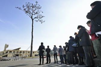「奇跡の一本松」で知られた岩手県陸前高田市だが、植樹事業「桜ライン311」も同市から始まった。写真はイメージ