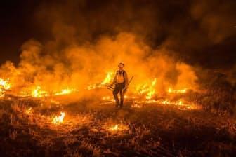 カリフォルニア州サンディエゴ郡、カンポとポトレロ付近を焼く「ボーダー・ファイア」の火。2016年6月22日撮影。この時点で約2600ヘクタールが焼け、制圧率は15%だった(PHOTOGRAPH BY STUART PALLEY)
