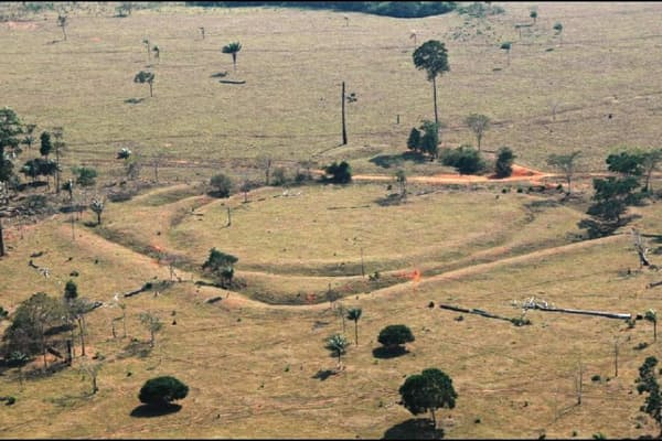 アマゾン南部の地表に残るジオグリフ。かつて多くの人が住み、にぎわっていた証拠だ(PHOTOGRAPH COURTESY OF UNIVERSITY OF EXETER)