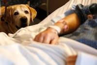 2018年3月6日、ボストン、マサチューセッツ総合病院の患者ジム・コーリーさんを訪ねるセラピー犬の「タッカー」(PHOTOGRAPH BY JESSICA RINALDI, THE BOSTON GLOBE/GETTY)